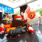 金魚展03